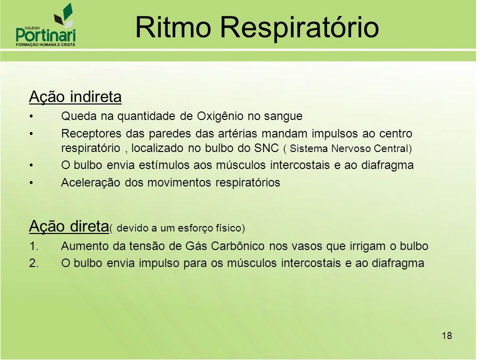 Ritmo Respiratório Ação indireta Queda na quantidade de Oxigênio no sangue Receptores das paredes das artérias mandam impulsos ao centro respiratório,