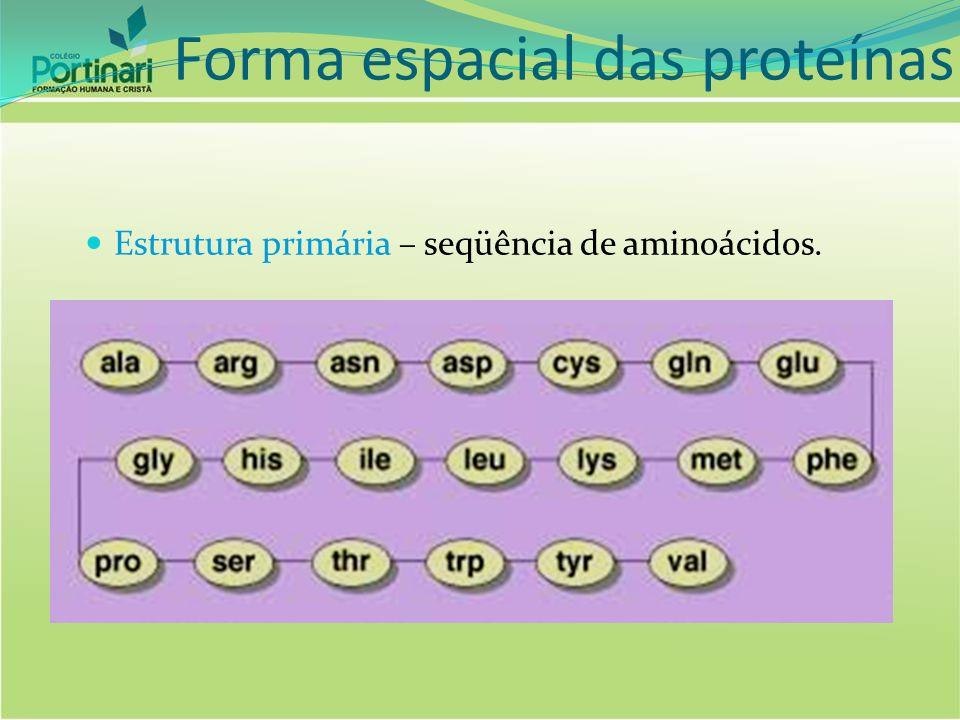 Estrutura secundária – forma espiralada da seqüência primária. Forma espacial das proteínas