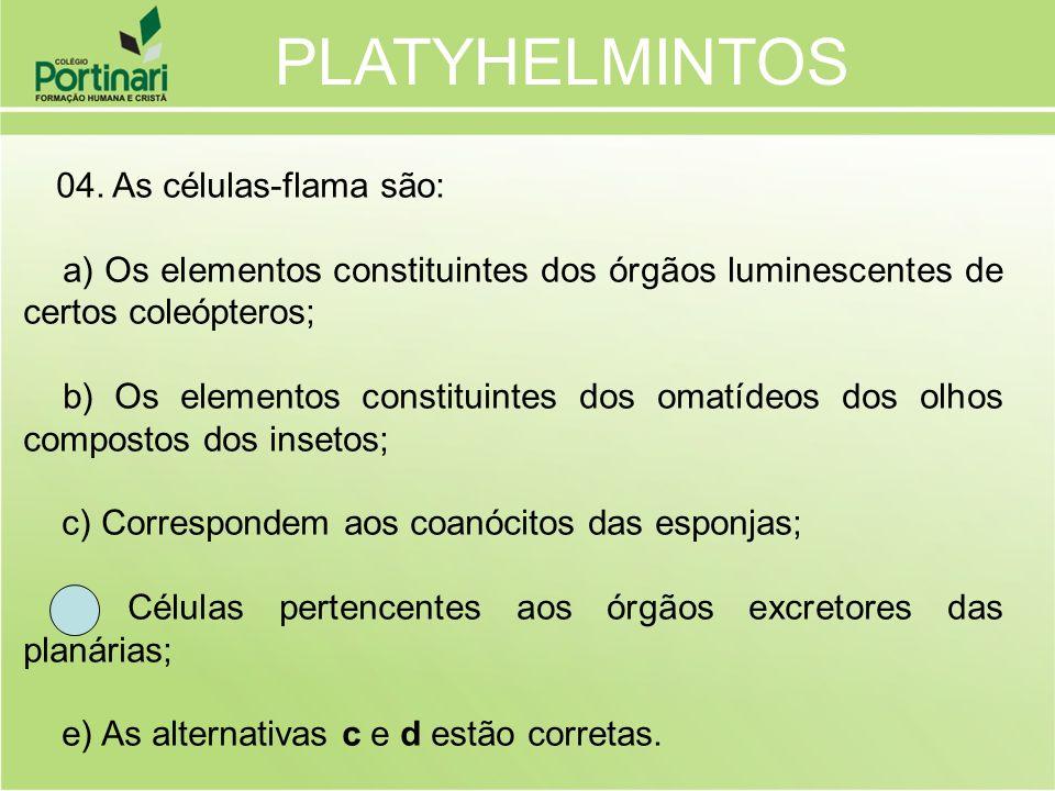 04. As células-flama são: a) Os elementos constituintes dos órgãos luminescentes de certos coleópteros; b) Os elementos constituintes dos omatídeos do