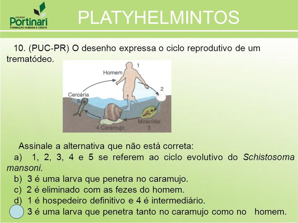 10. (PUC-PR) O desenho expressa o ciclo reprodutivo de um trematódeo. Assinale a alternativa que não está correta: a) 1, 2, 3, 4 e 5 se referem ao cic