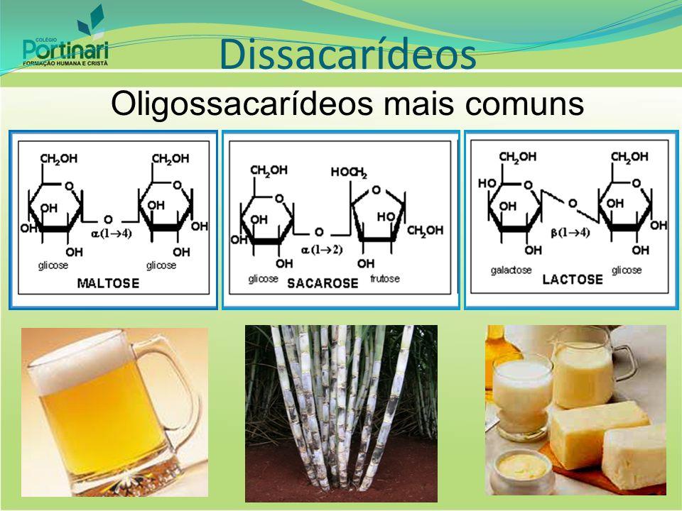Dissacarídeos Oligossacarídeos mais comuns