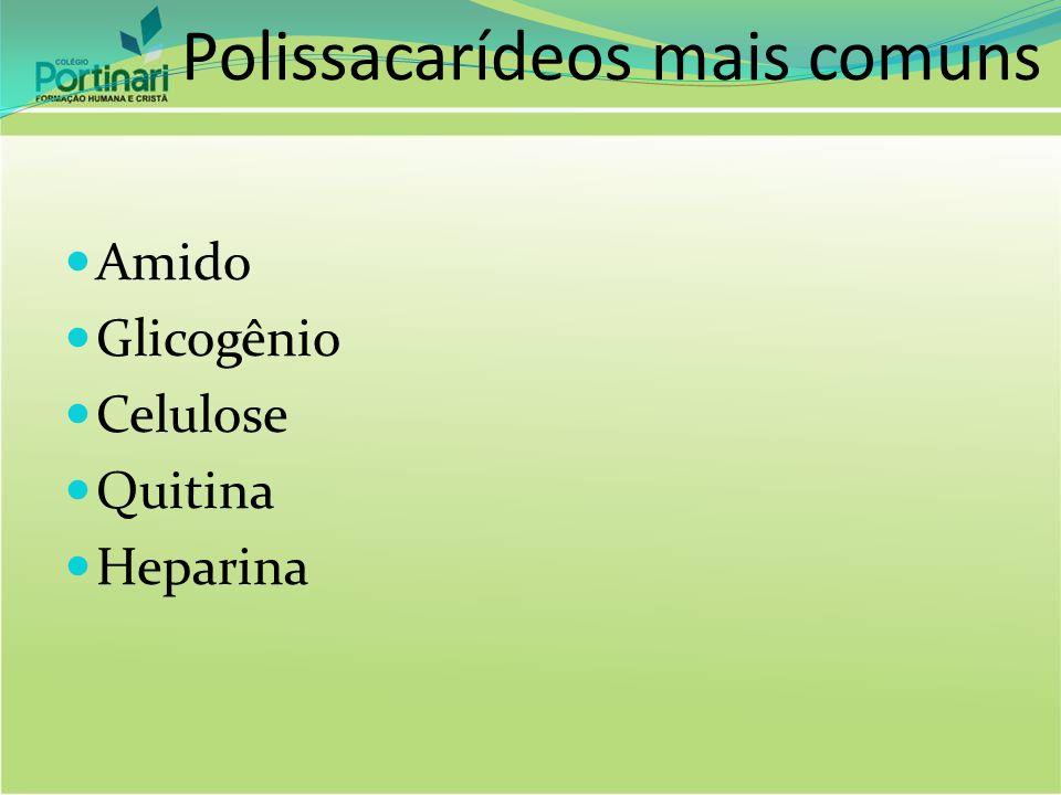 Polissacarídeos mais comuns Amido Glicogênio Celulose Quitina Heparina