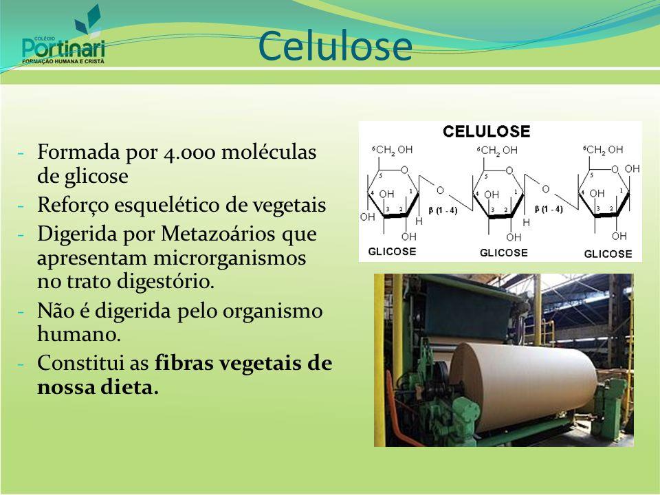 Celulose - Formada por 4.000 moléculas de glicose - Reforço esquelético de vegetais - Digerida por Metazoários que apresentam microrganismos no trato digestório.