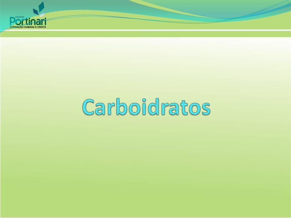 Características Principal fonte de energia celular Importantes constituintes estruturais Sinais de reconhecimento: Função informacional Patologia Diabetes Mellitus Obesidade Patológica Carboidratos