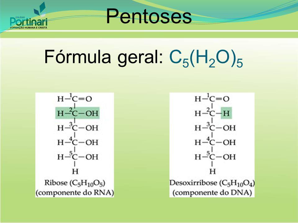 Pentoses Fórmula geral: C 5 (H 2 O) 5