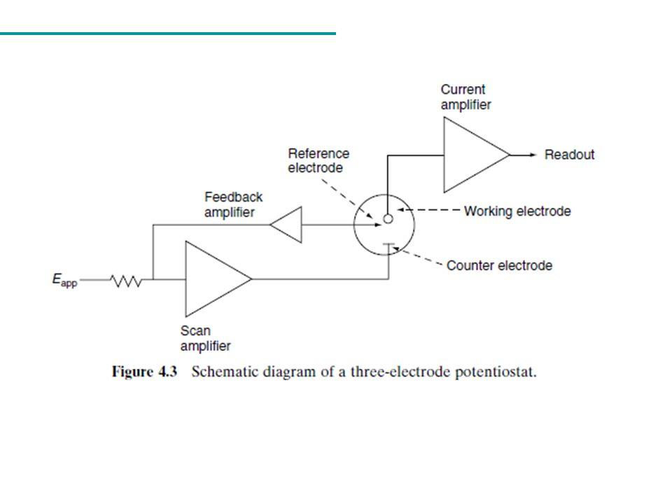 Enzimas São proteínas que agem como catalisadores biológicos: enzima Composto A Composto B Centro ativo ou sítio catalítico Não há consumo ou modificação permanente da enzima