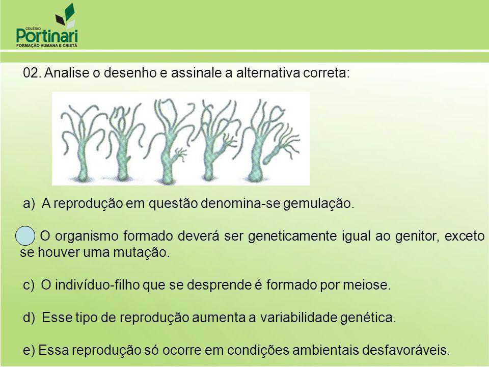 02. Analise o desenho e assinale a alternativa correta: a) A reprodução em questão denomina-se gemulação. b) O organismo formado deverá ser geneticame