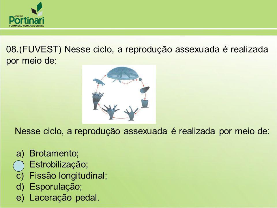 08.(FUVEST) Nesse ciclo, a reprodução assexuada é realizada por meio de: Nesse ciclo, a reprodução assexuada é realizada por meio de: a) Brotamento; b