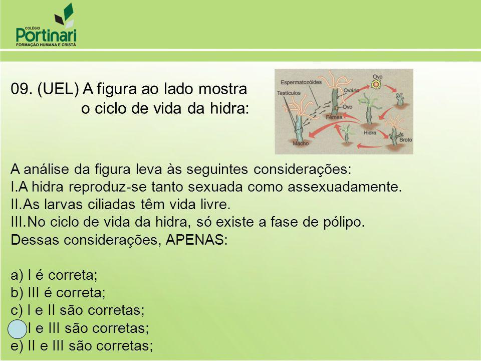 09. (UEL) A figura ao lado mostra o ciclo de vida da hidra: A análise da figura leva às seguintes considerações: I.A hidra reproduz-se tanto sexuada c