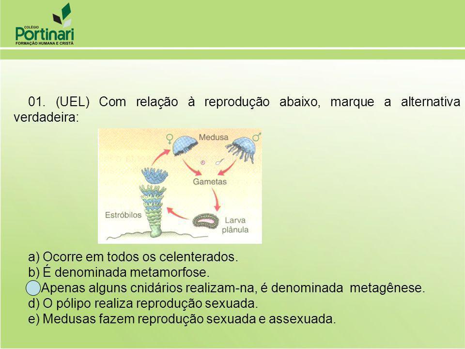01. (UEL) Com relação à reprodução abaixo, marque a alternativa verdadeira: a) Ocorre em todos os celenterados. b) É denominada metamorfose. c) Apenas