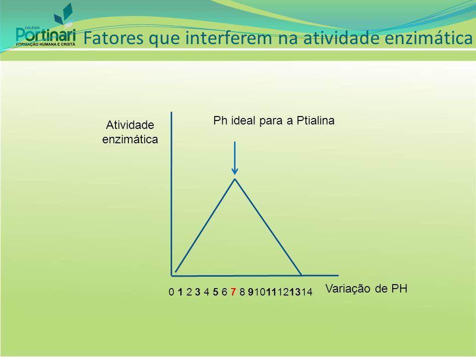 Atividade enzimática Variação de PH Ph ideal para a Ptialina 0 1 2 3 4 5 6 7 8 91011121314 Fatores que interferem na atividade enzimática