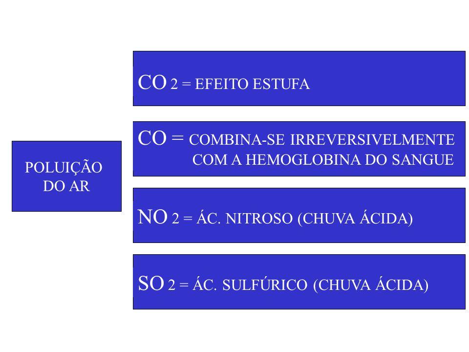 POLUIÇÃO DO AR CO 2 = EFEITO ESTUFA CO = COMBINA-SE IRREVERSIVELMENTE COM A HEMOGLOBINA DO SANGUE NO 2 = ÁC. NITROSO (CHUVA ÁCIDA) SO 2 = ÁC. SULFÚRIC
