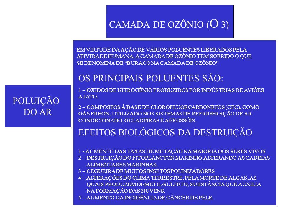 POLUIÇÃO DO AR CAMADA DE OZÔNIO ( O 3) EM VIRTUDE DA AÇÃO DE VÁRIOS POLUENTES LIBERADOS PELA ATIVIDADE HUMANA, A CAMADA DE OZÔNIO TEM SOFRIDO O QUE SE