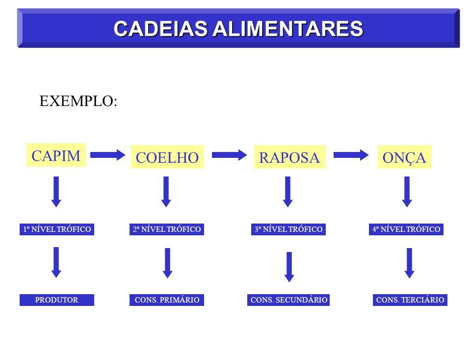 CADEIAS ALIMENTARES EXEMPLO: CAPIM COELHORAPOSAONÇA 2º NÍVEL TRÓFICO3º NÍVEL TRÓFICO4º NÍVEL TRÓFICO1º NÍVEL TRÓFICO CONS. PRIMÁRIO CONS. SECUNDÁRIO C