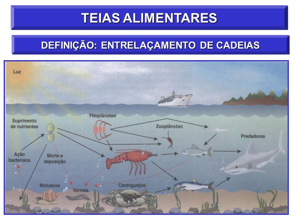 TEIAS ALIMENTARES DEFINIÇÃO: ENTRELAÇAMENTO DE CADEIAS