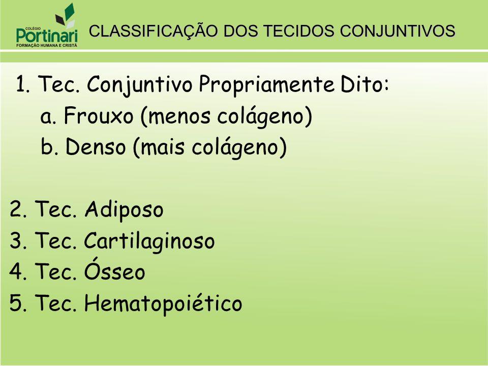 CLASSIFICAÇÃO DOS TECIDOS CONJUNTIVOS 1. Tec. Conjuntivo Propriamente Dito: a. Frouxo (menos colágeno) b. Denso (mais colágeno) 2. Tec. Adiposo 3. Tec