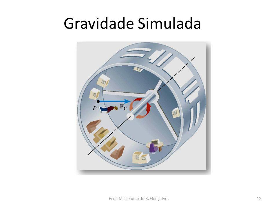 Gravidade Simulada Prof. Msc. Eduardo R. Gonçalves12