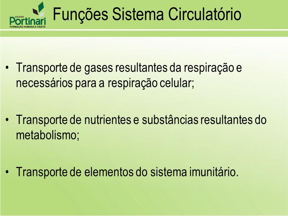Funções Sistema Circulatório Transporte de gases resultantes da respiração e necessários para a respiração celular; Transporte de nutrientes e substân