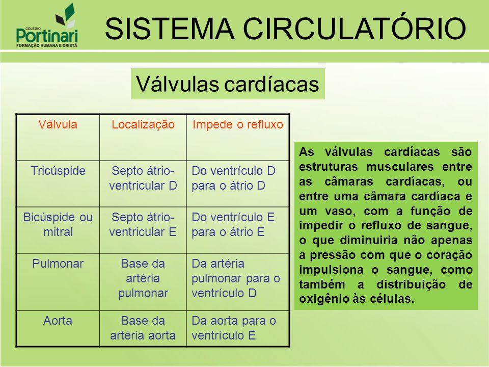 VálvulaLocalizaçãoImpede o refluxo TricúspideSepto átrio- ventricular D Do ventrículo D para o átrio D Bicúspide ou mitral Septo átrio- ventricular E