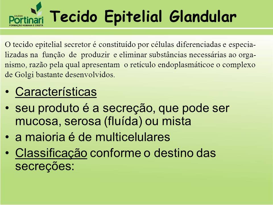 Tecido Epitelial Glandular Características seu produto é a secreção, que pode ser mucosa, serosa (fluída) ou mista a maioria é de multicelulares Class
