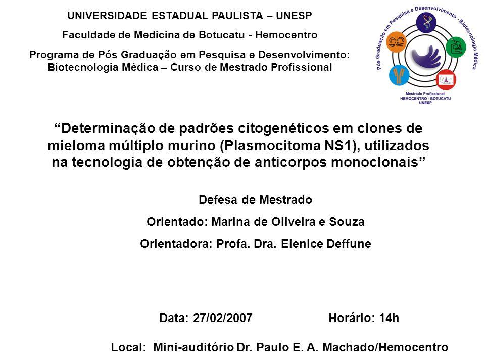 Determinação de padrões citogenéticos em clones de mieloma múltiplo murino (Plasmocitoma NS1), utilizados na tecnologia de obtenção de anticorpos monoclonais Defesa de Mestrado Orientado: Marina de Oliveira e Souza Orientadora: Profa.