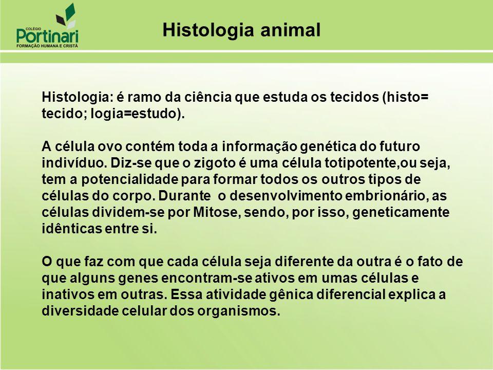 Histologia animal Histologia: é ramo da ciência que estuda os tecidos (histo= tecido; logia=estudo). A célula ovo contém toda a informação genética do