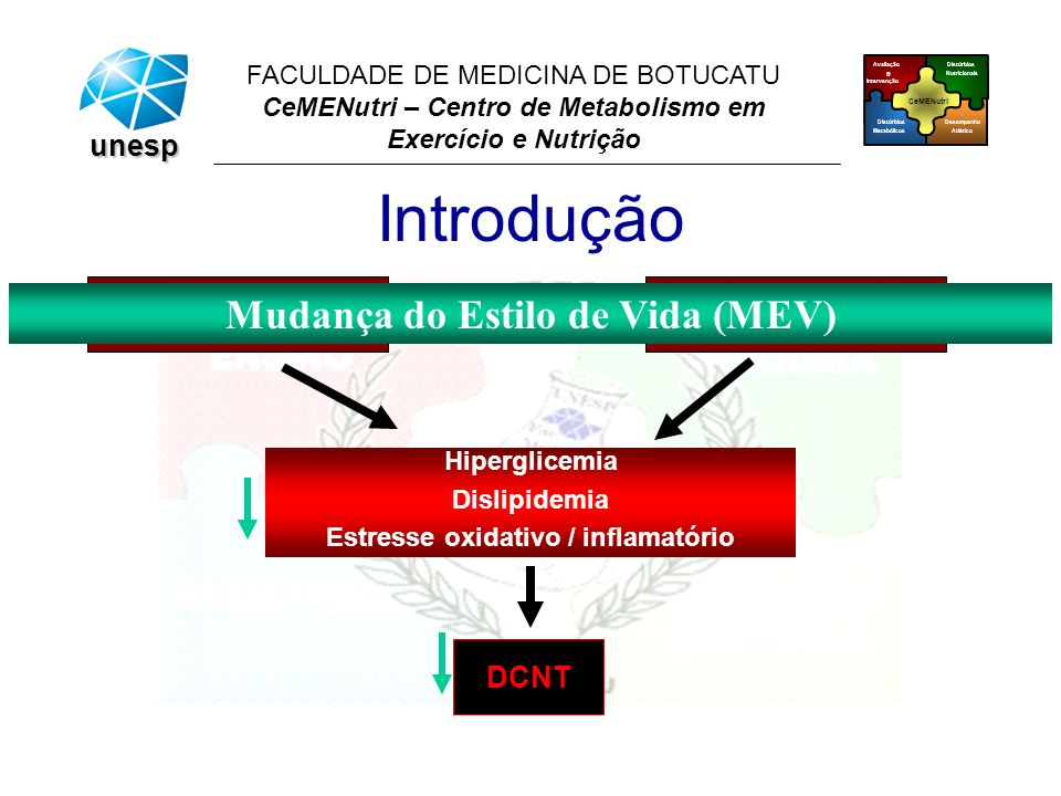 CeMENutri Avaliação e Intervenção Desempenho Atlético Distúrbios Metabólicos Distúrbios Nutricionais FACULDADE DE MEDICINA DE BOTUCATU CeMENutri – Cen