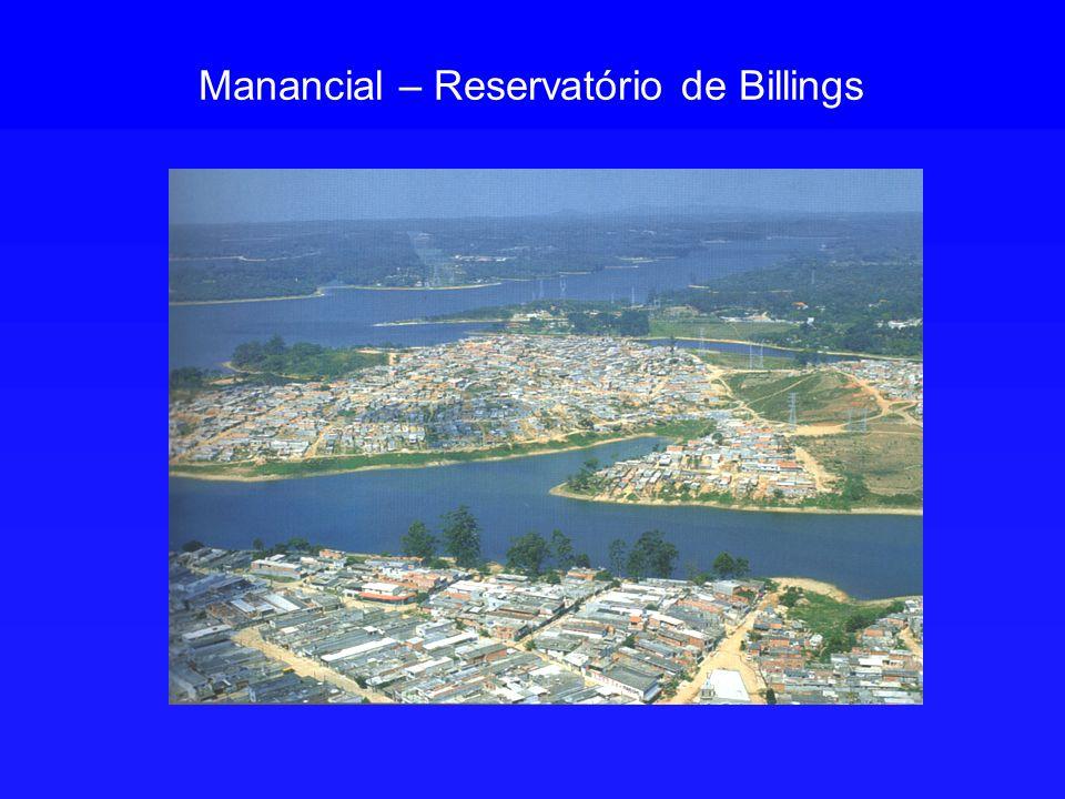 Manancial – Reservatório de Billings