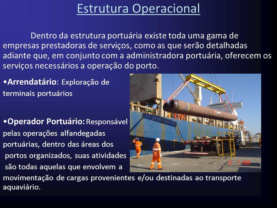 Práticos (pilotos marítimos): Trata-se de pessoal técnico especializado, com grande conhecimento marítimo e náutico, além de total domínio da região, no porto em que trabalham e nos canais de navegação.
