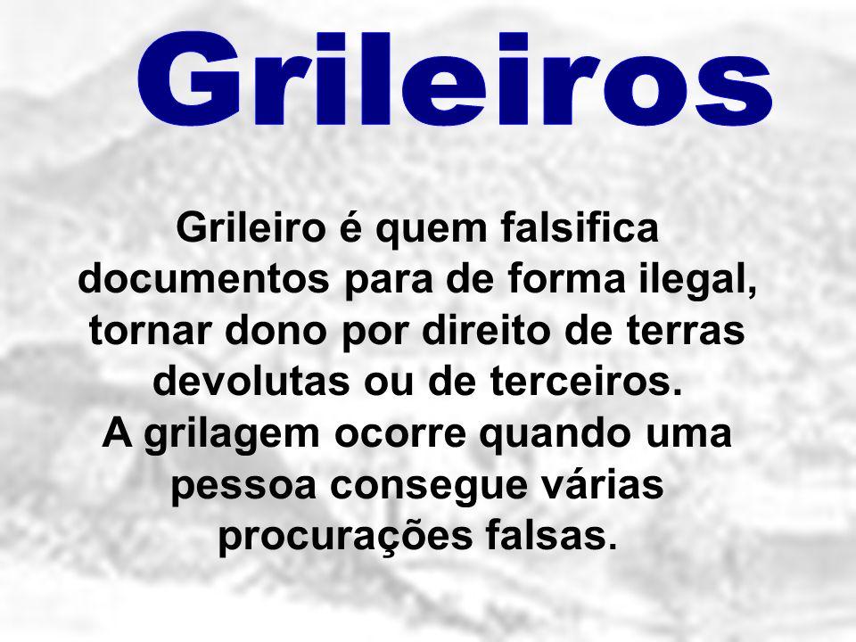 Grileiro é quem falsifica documentos para de forma ilegal, tornar dono por direito de terras devolutas ou de terceiros. A grilagem ocorre quando uma p