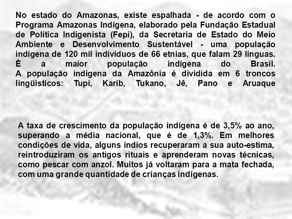 No estado do Amazonas, existe espalhada - de acordo com o Programa Amazonas Indígena, elaborado pela Fundação Estadual de Política Indigenista (Fepi),