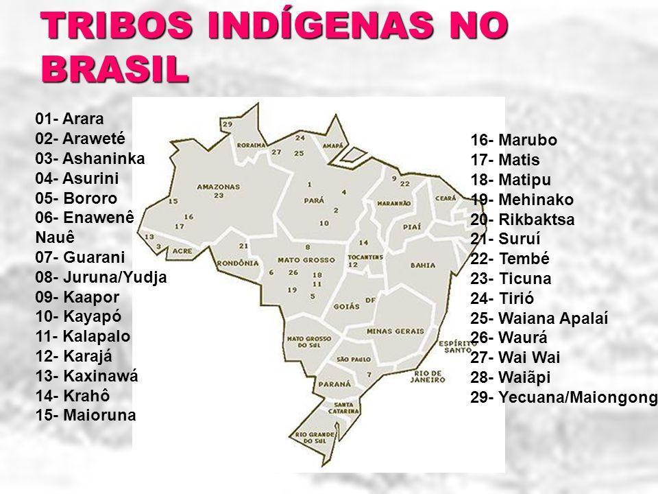 01- Arara 02- Araweté 03- Ashaninka 04- Asurini 05- Bororo 06- Enawenê Nauê 07- Guarani 08- Juruna/Yudja 09- Kaapor 10- Kayapó 11- Kalapalo 12- Karajá