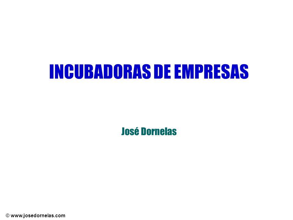 © www.josedornelas.com INCUBADORAS DE EMPRESAS José Dornelas