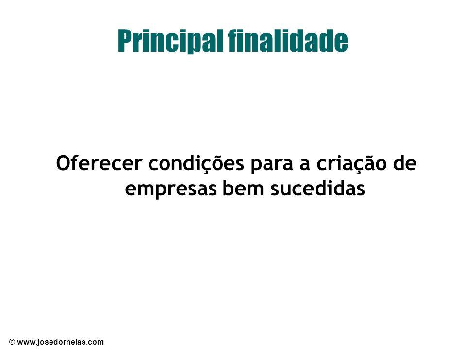 © www.josedornelas.com Principal finalidade Oferecer condições para a criação de empresas bem sucedidas