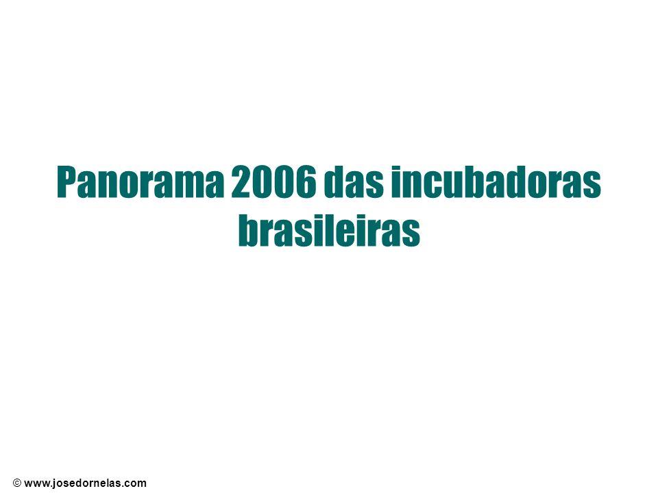 © www.josedornelas.com Panorama 2006 das incubadoras brasileiras