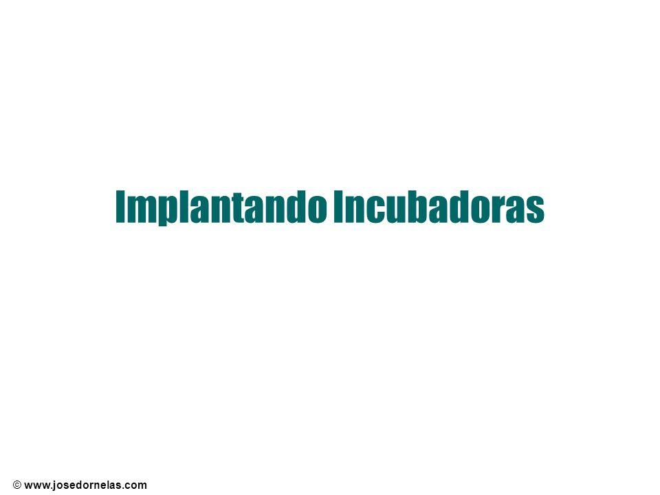 © www.josedornelas.com Implantando Incubadoras