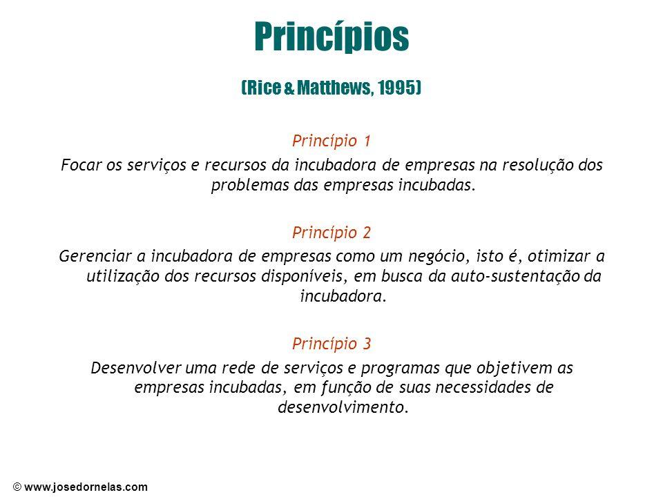 © www.josedornelas.com Princípios (Rice & Matthews, 1995) Princípio 1 Focar os serviços e recursos da incubadora de empresas na resolução dos problema