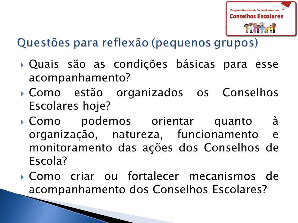 Quais são as condições básicas para esse acompanhamento? Como estão organizados os Conselhos Escolares hoje? Como podemos orientar quanto à organizaçã