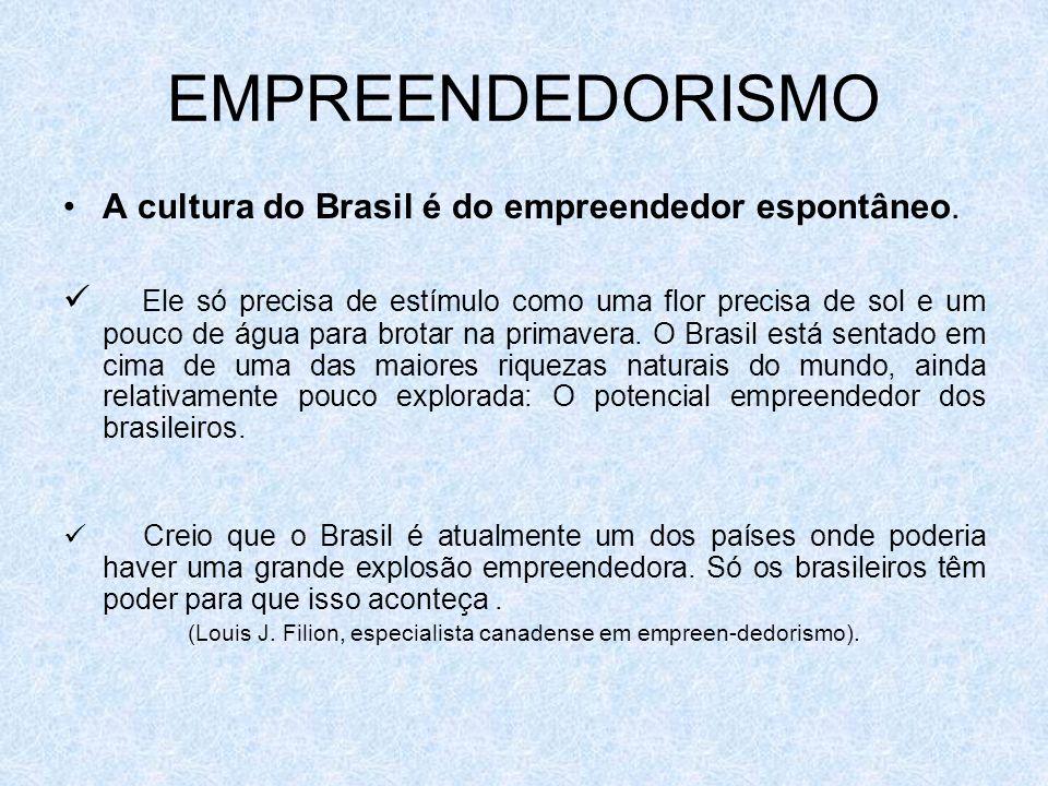 A cultura do Brasil é do empreendedor espontâneo. Ele só precisa de estímulo como uma flor precisa de sol e um pouco de água para brotar na primavera.