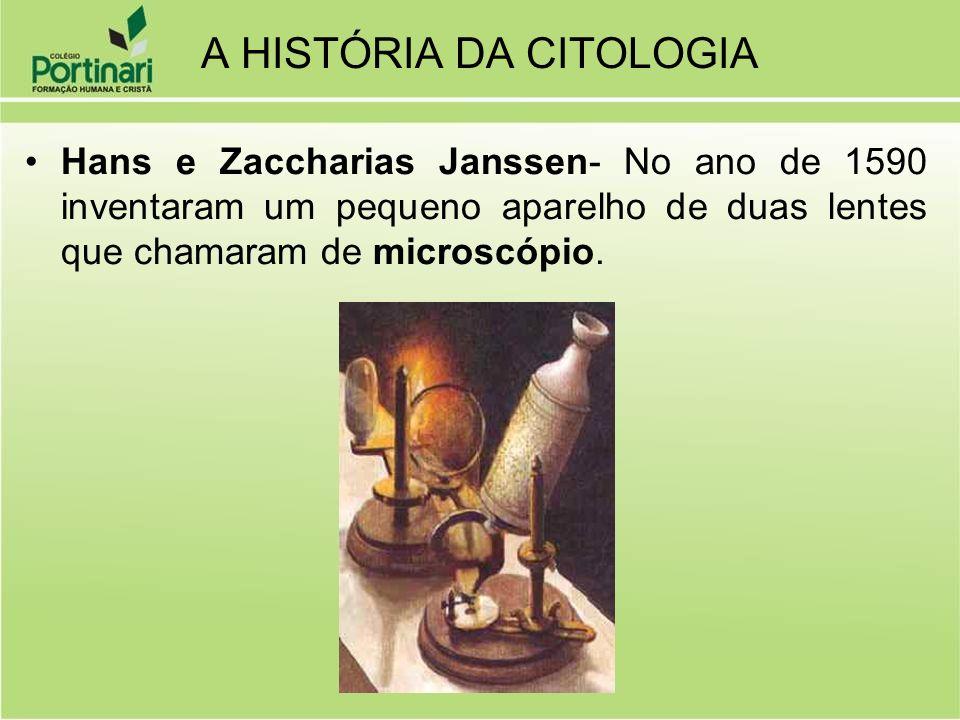 MICROSCOPIA Microscópio óptico (até 2000 vezes); Microscópio eletrônico (até 100 milhões de vezes);