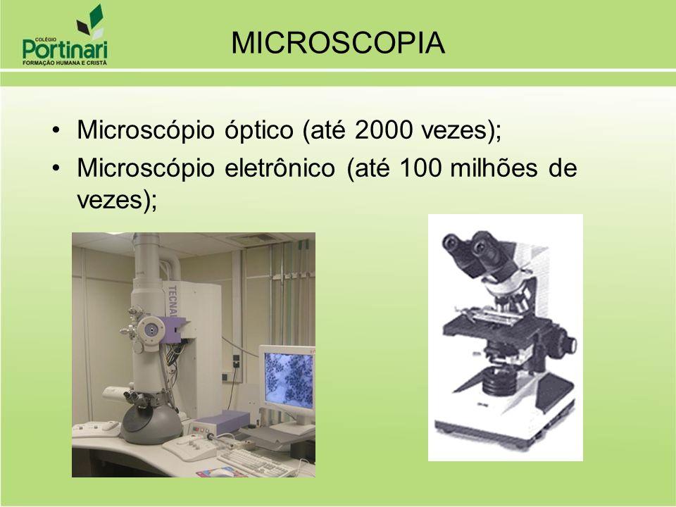 Citologia As células podem ser categorizadas por tamanho: –Microscópicas (< 0,1 mm).