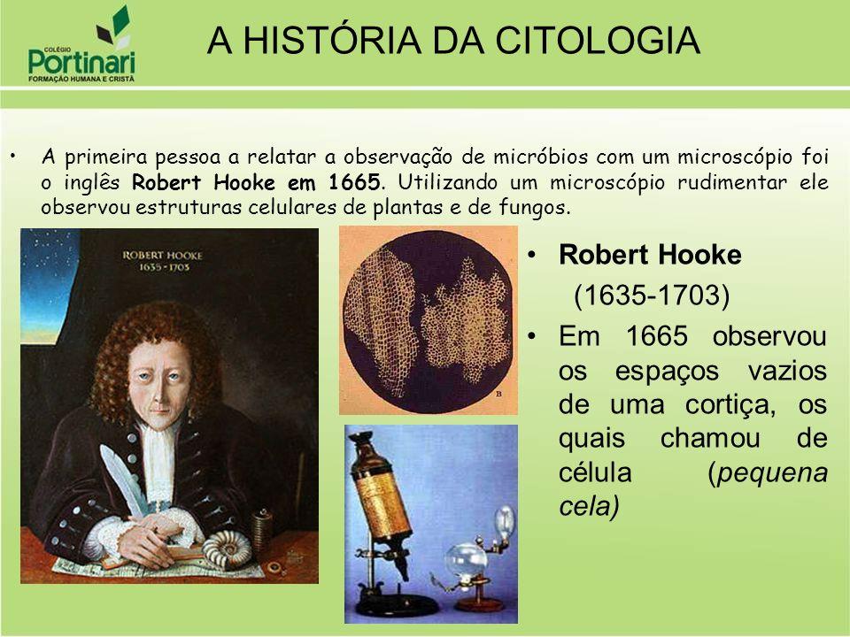 A primeira pessoa a relatar a observação de micróbios com um microscópio foi o inglês Robert Hooke em 1665. Utilizando um microscópio rudimentar ele o