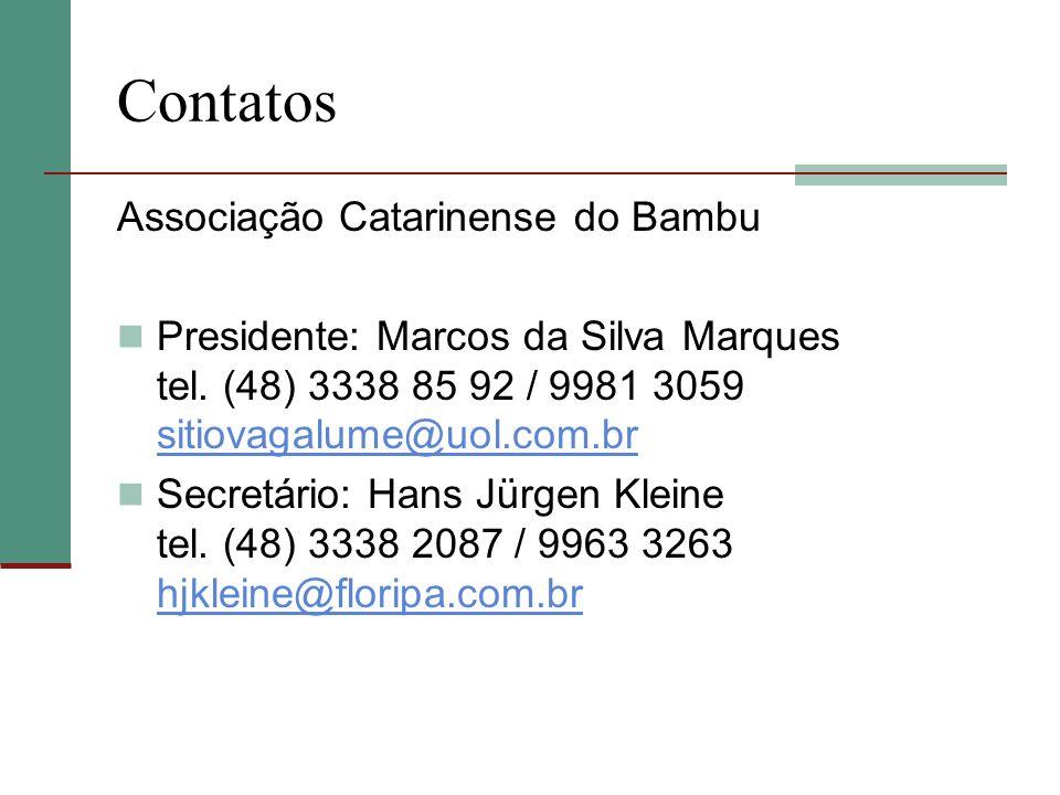 Contatos Associação Catarinense do Bambu Presidente: Marcos da Silva Marques tel. (48) 3338 85 92 / 9981 3059 sitiovagalume@uol.com.br sitiovagalume@u