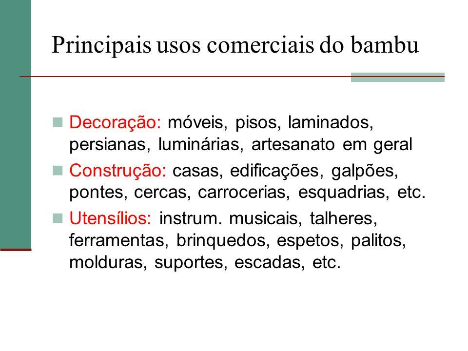 Principais usos comerciais do bambu Decoração: móveis, pisos, laminados, persianas, luminárias, artesanato em geral Construção: casas, edificações, ga