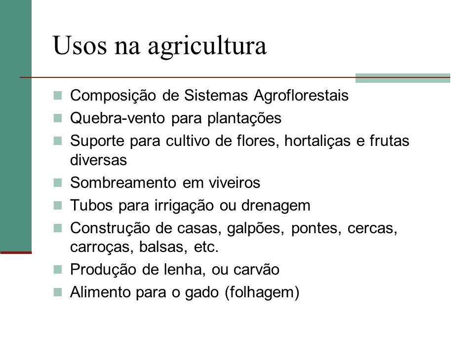 Usos na agricultura Composição de Sistemas Agroflorestais Quebra-vento para plantações Suporte para cultivo de flores, hortaliças e frutas diversas So