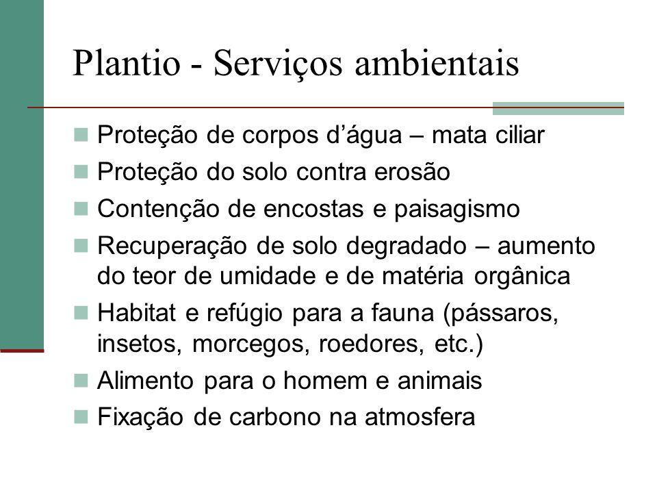 Plantio - Serviços ambientais Proteção de corpos dágua – mata ciliar Proteção do solo contra erosão Contenção de encostas e paisagismo Recuperação de