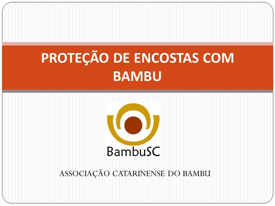 CNPJ: 07.402.305/0001-79 Rua Auroreal, nº 870 – Campeche Florianópolis – SC Telefone: (48) 3338-2087 A ASSOCIAÇÃO CATARINENSE DO BAMBU, também designada pela sigla BambuSC, constituída em 02 de maio de 2005, é pessoa jurídica de direito privado, sem fins lucrativos e duração por tempo indeterminado, com sede e foro no município de Florianópolis, Estado de Santa Catarina.