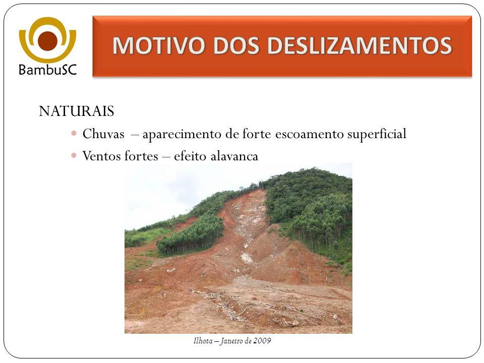 ALTERAÇÕES ANTRÓPICAS Cortes muito íngremes Alteração nos cursos d´agua Erosão – carregamento de sedimentos devido a falta de vegetação