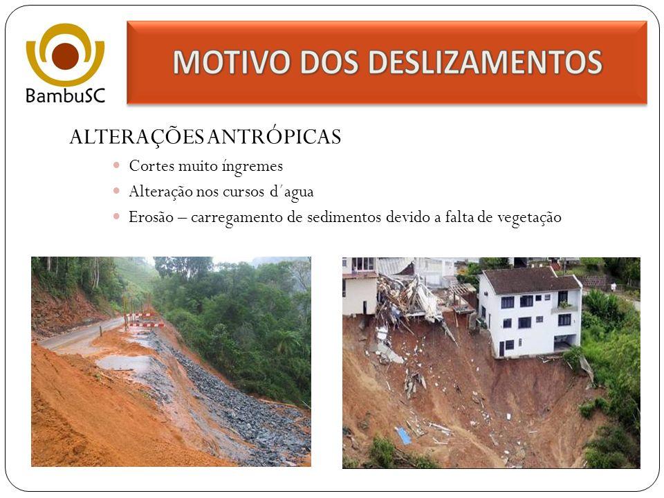 POTENCIALIZAR DRENAGEM Feixes de bambu enterrados Muros drenantes Fonte: Infra-estrutura Habitacional Alternativa Juan Luis Marscaró