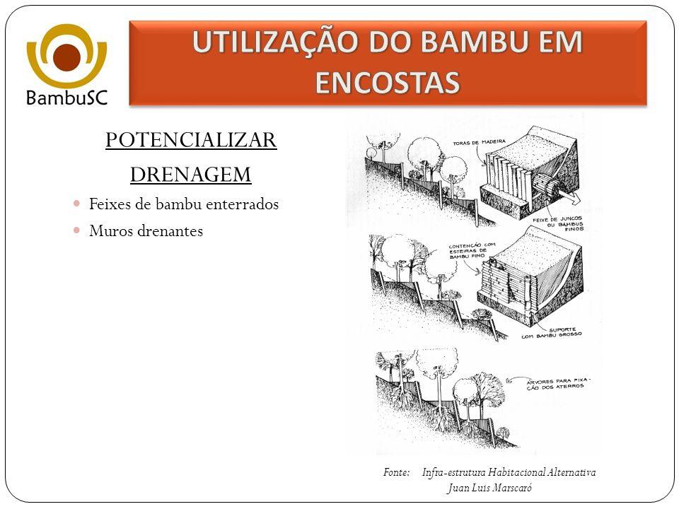 AUMENTAR RESISTÊNCIA DO TALUDE Contenções Fonte: Bambu de Corpo e Alma TaludeCunha de Deslizamento Inicial ESTACAS DE BAMBU Cunha de Deslizamento Final